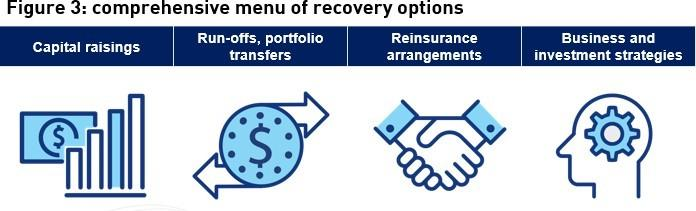 Figure 3: comprehensive menu of recovery options