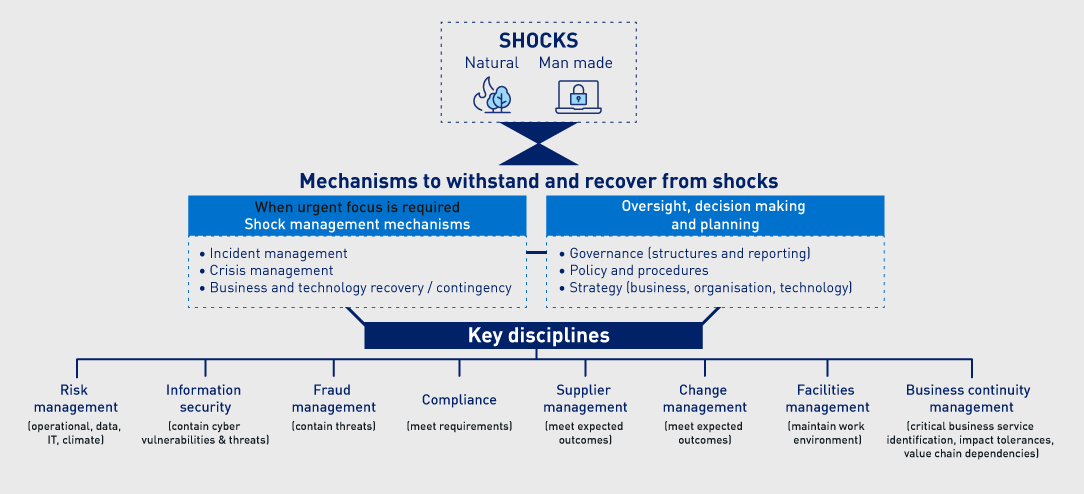 Conceptual model of the mechanisms that maintain operational resilience